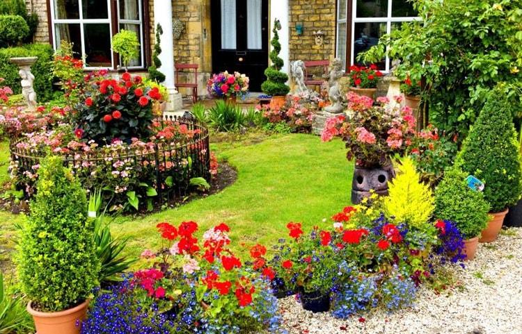حديقة منزلية صغيرة (2)