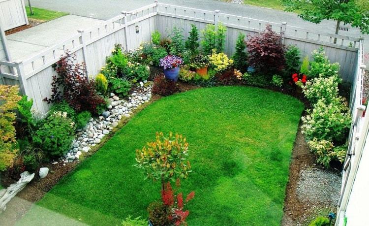 حديقة منزلية صغيرة (3)