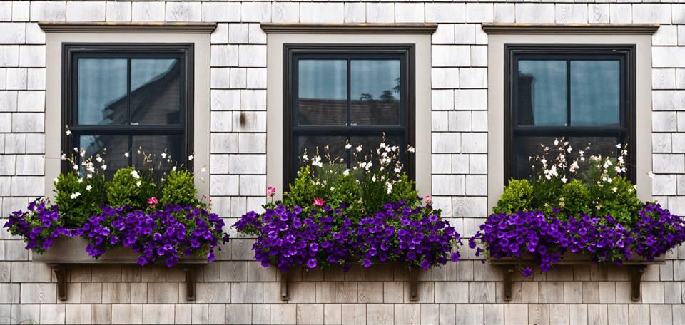 اشكال نوافذ (1)